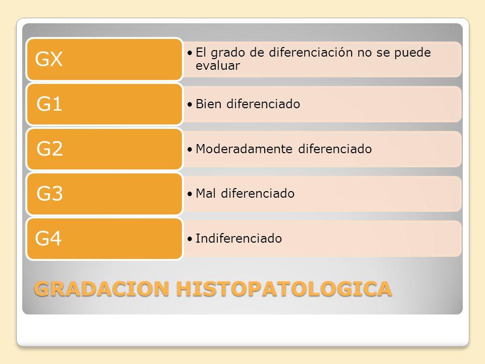 GRADACION HISTOPATOLOGICA