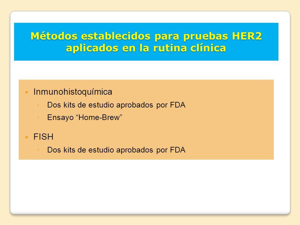Métodos establecidos para pruebas HER2 aplicados en la rutina clínica
