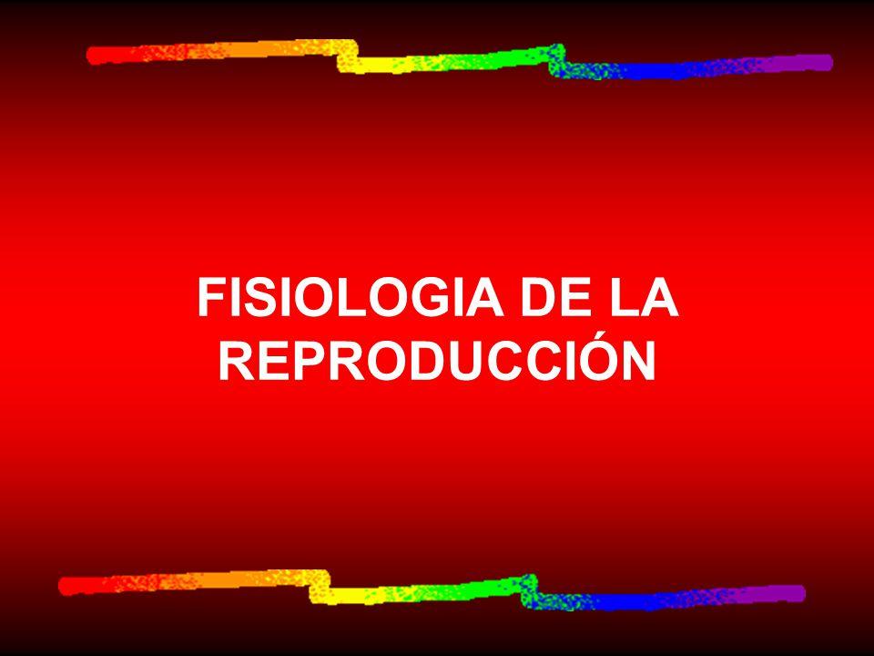 FISIOLOGIA DE LA REPRODUCCIÓN