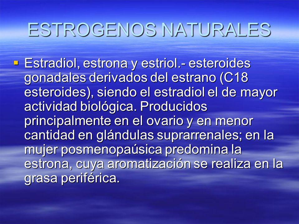 ESTROGENOS NATURALES