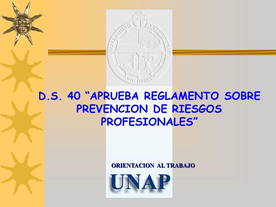 D.S. 40 APRUEBA REGLAMENTO SOBRE PREVENCION DE RIESGOS PROFESIONALES