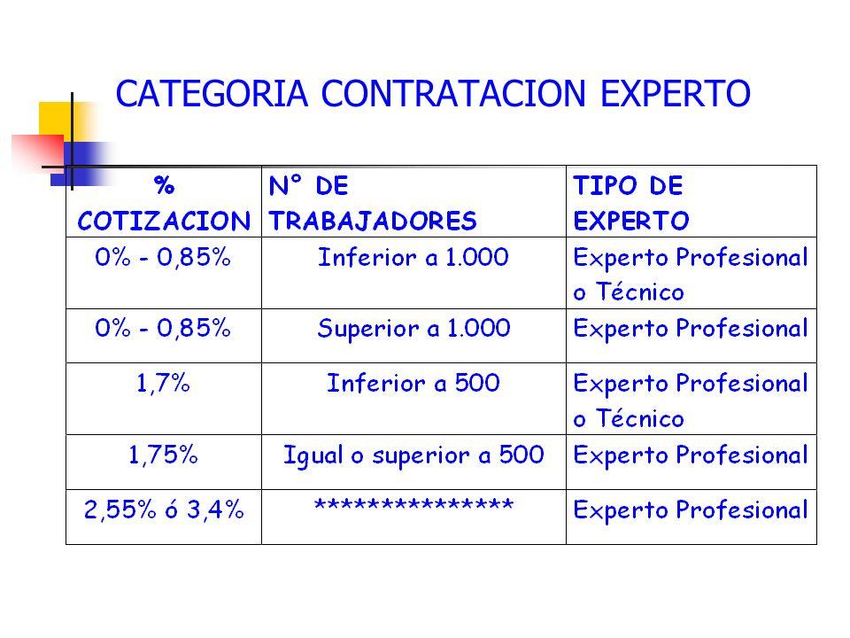 CATEGORIA CONTRATACION EXPERTO