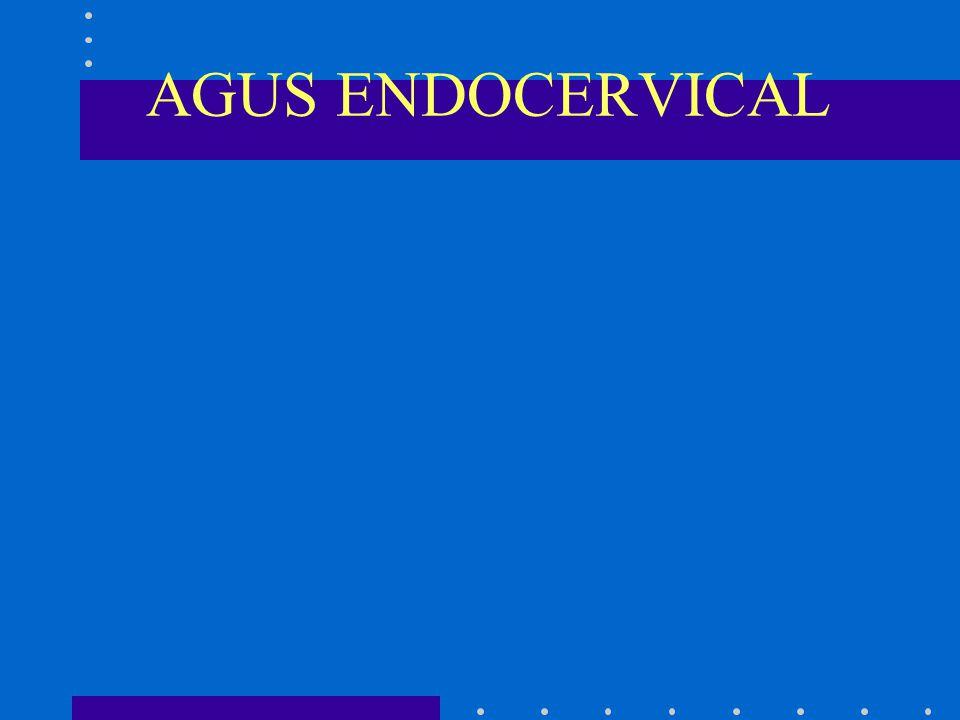 AGUS ENDOCERVICAL