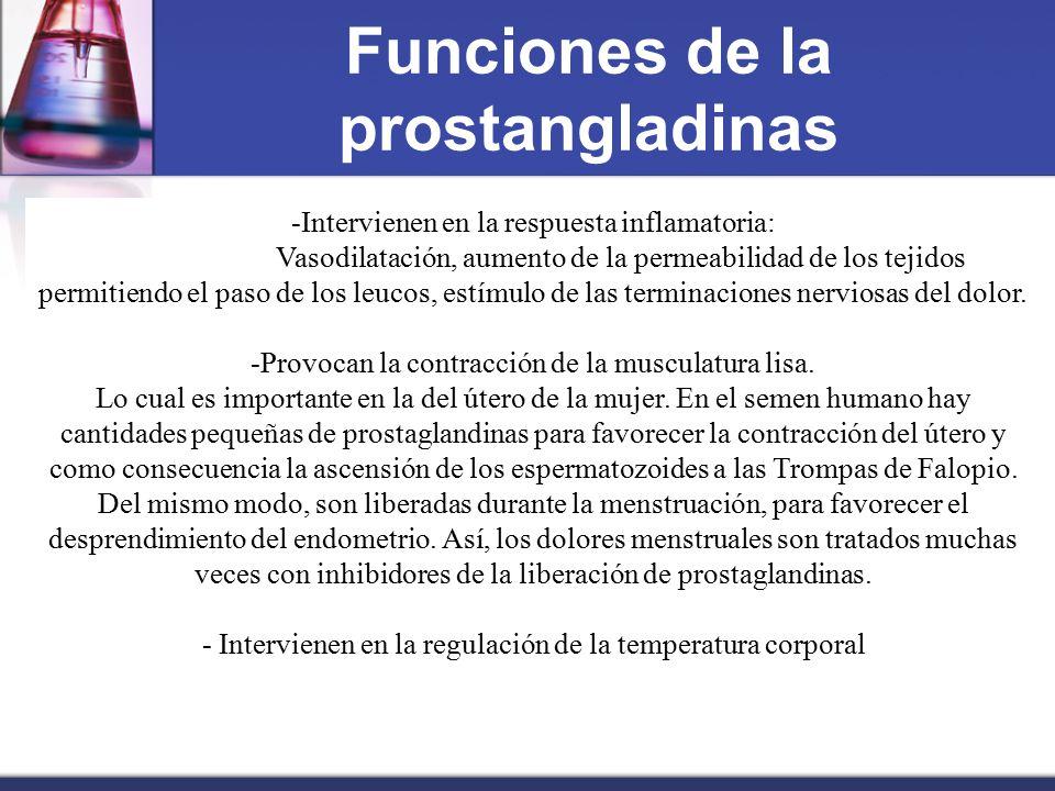 Funciones de la prostangladinas