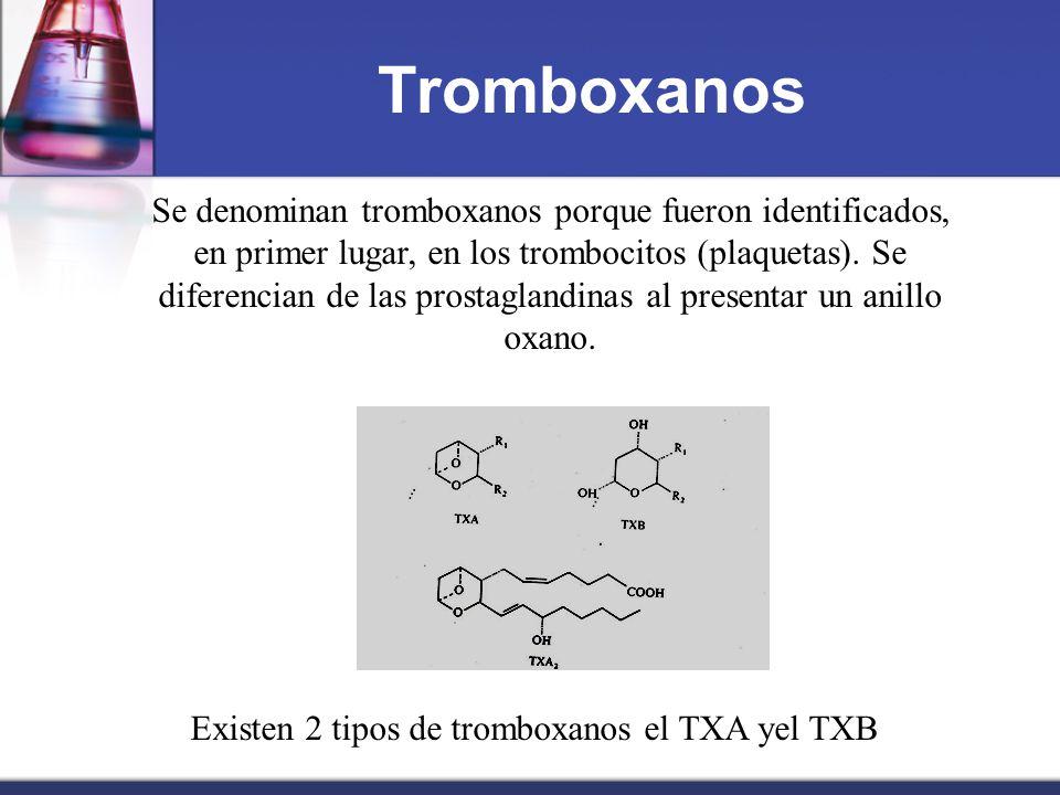 Existen 2 tipos de tromboxanos el TXA yel TXB