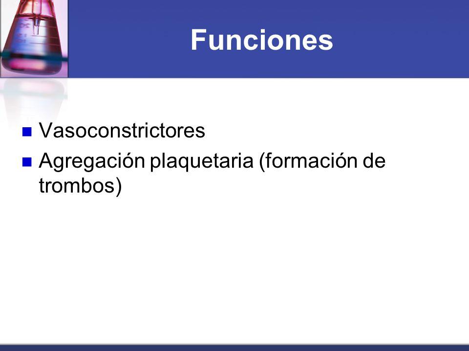 Funciones Vasoconstrictores