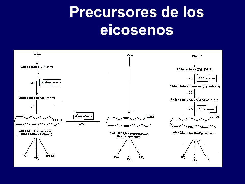 Precursores de los eicosenos