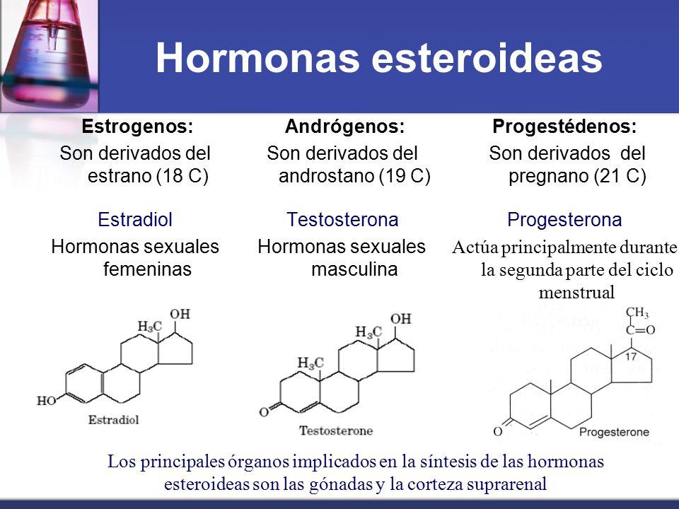 Hormonas esteroideas Estrogenos: Son derivados del estrano (18 C) Estradiol Hormonas sexuales femeninas