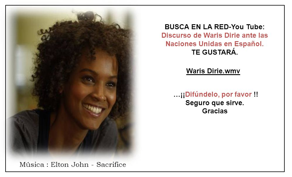 BUSCA EN LA RED-You Tube: