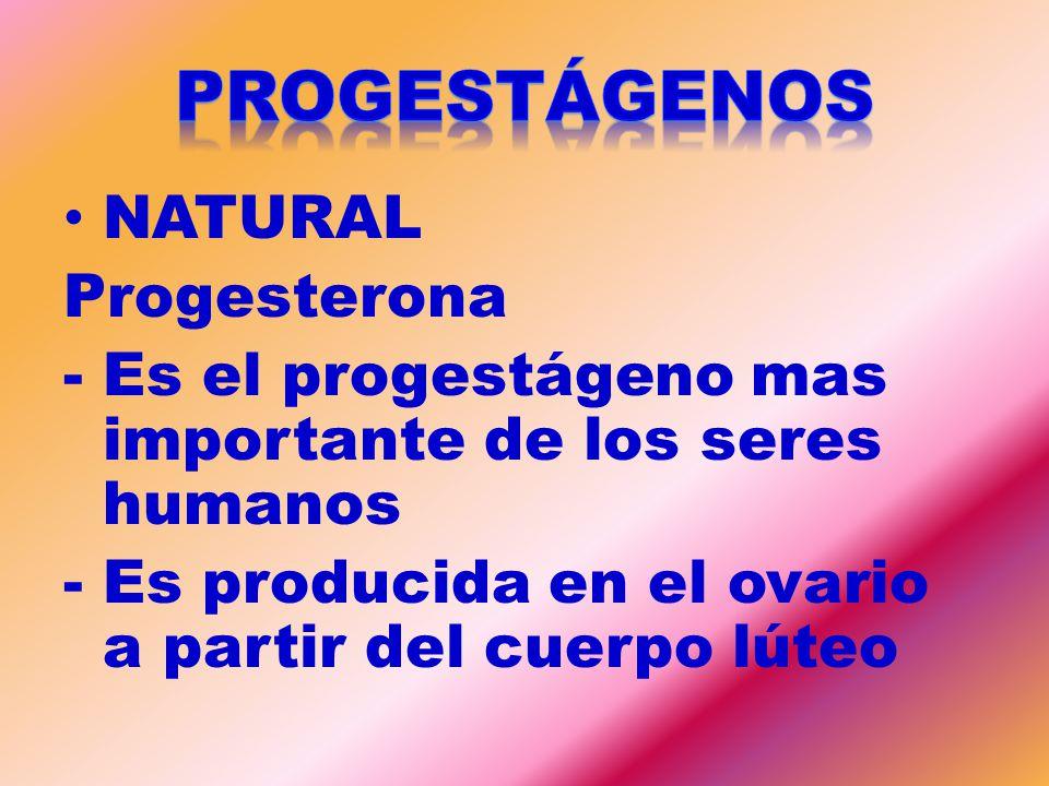 PROGESTÁGENOS NATURAL Progesterona