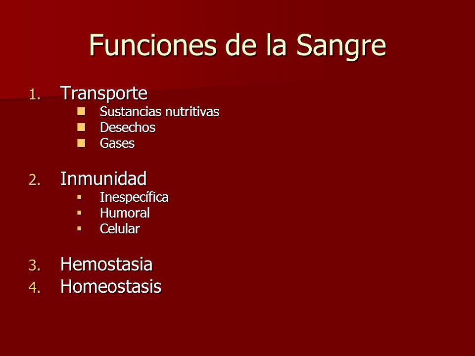 Funciones de la Sangre Transporte Inmunidad Hemostasia Homeostasis