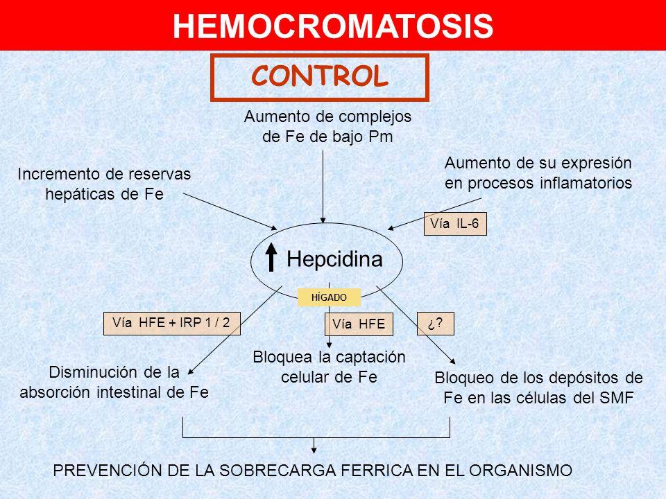HEMOCROMATOSIS CONTROL Hepcidina Aumento de complejos de Fe de bajo Pm