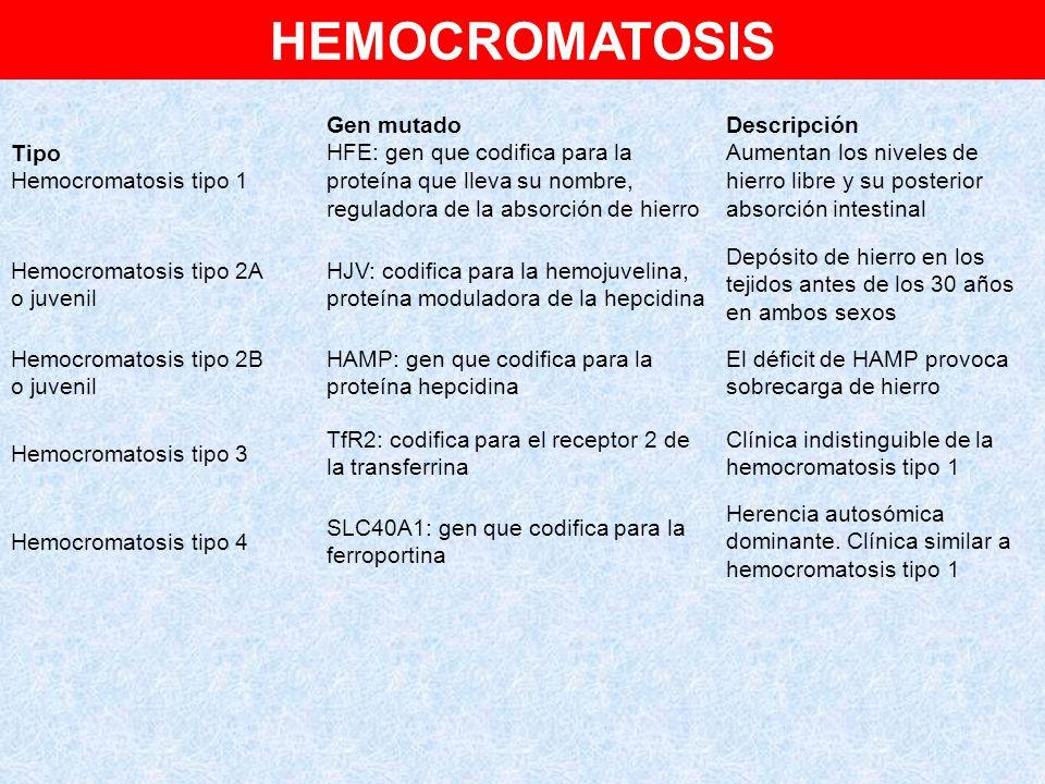 HEMOCROMATOSIS Tipo Hemocromatosis tipo 1 Gen mutado