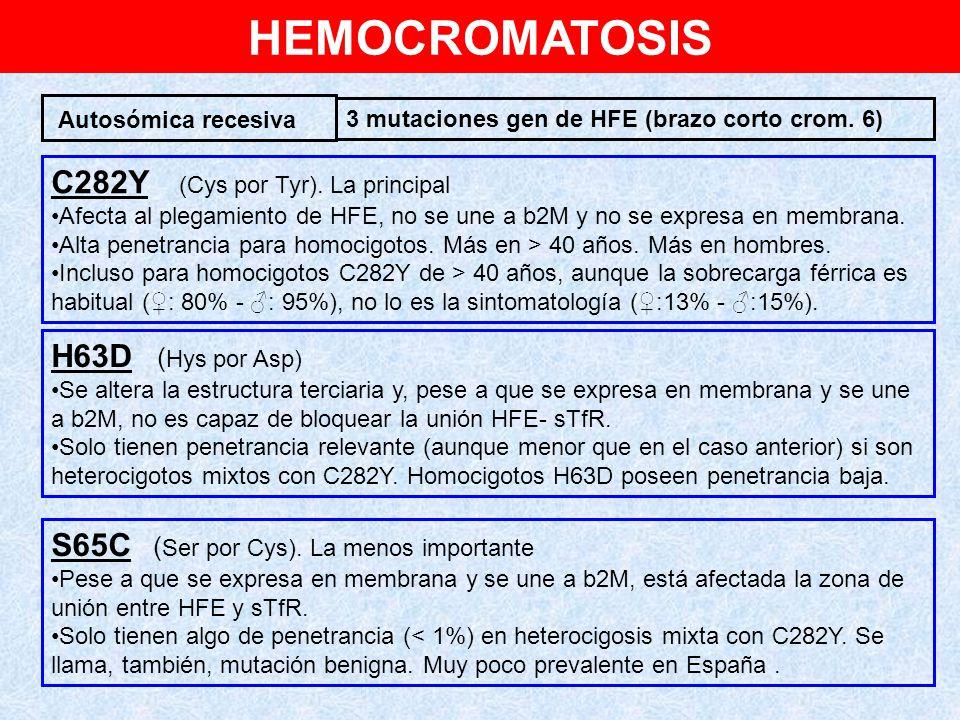 HEMOCROMATOSIS C282Y (Cys por Tyr). La principal H63D (Hys por Asp)