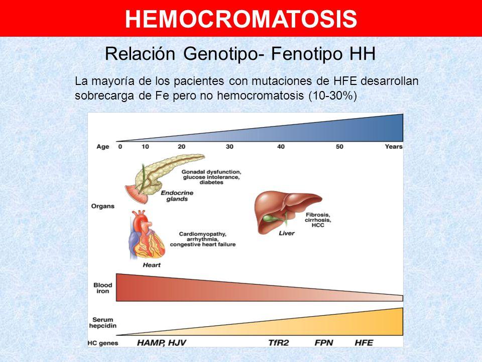 Relación Genotipo- Fenotipo HH