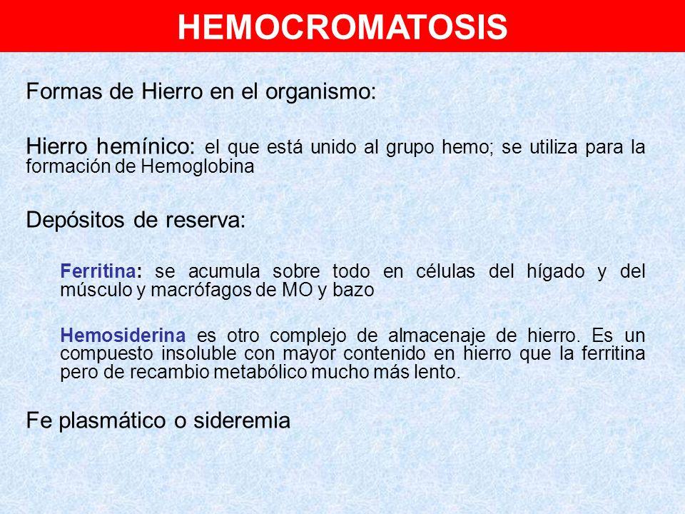 HEMOCROMATOSIS Formas de Hierro en el organismo: