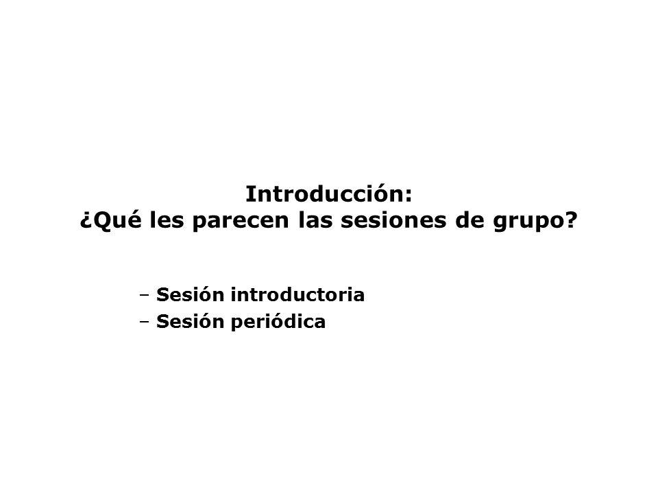 Introducción: ¿Qué les parecen las sesiones de grupo
