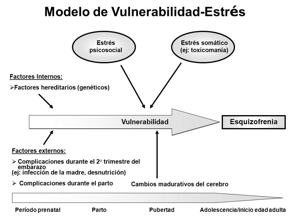 Modelo de Vulnerabilidad-Estrés Adolescencia/inicio edad adulta