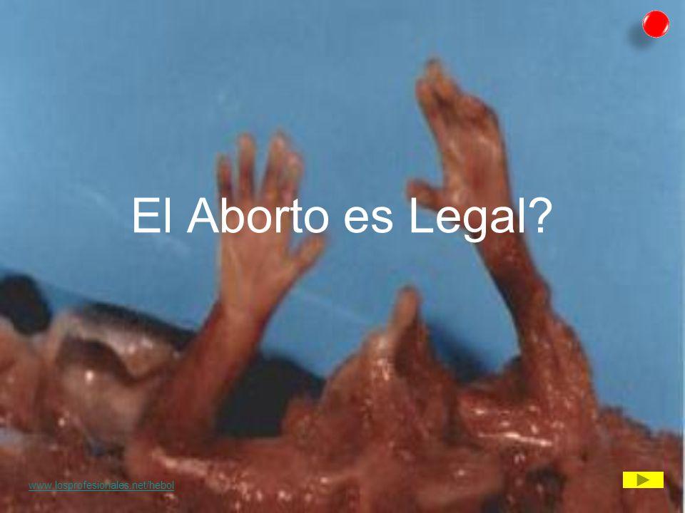 El Aborto es Legal www.losprofesionales.net/hebol *