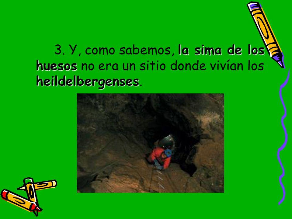 3. Y, como sabemos, la sima de los huesos no era un sitio donde vivían los heildelbergenses.