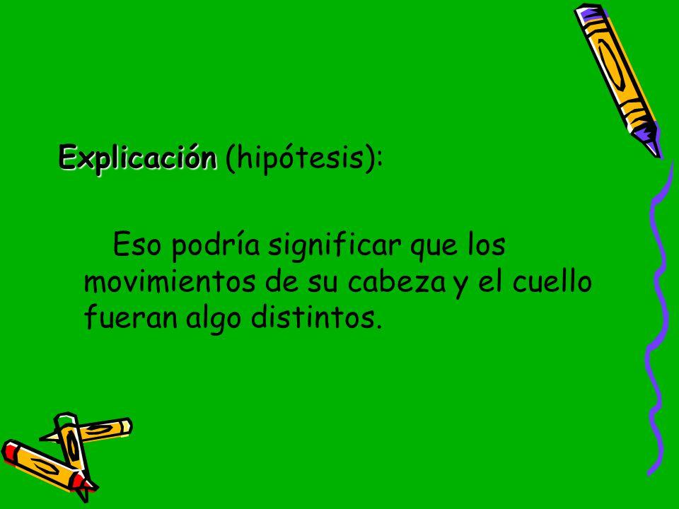 Explicación (hipótesis):