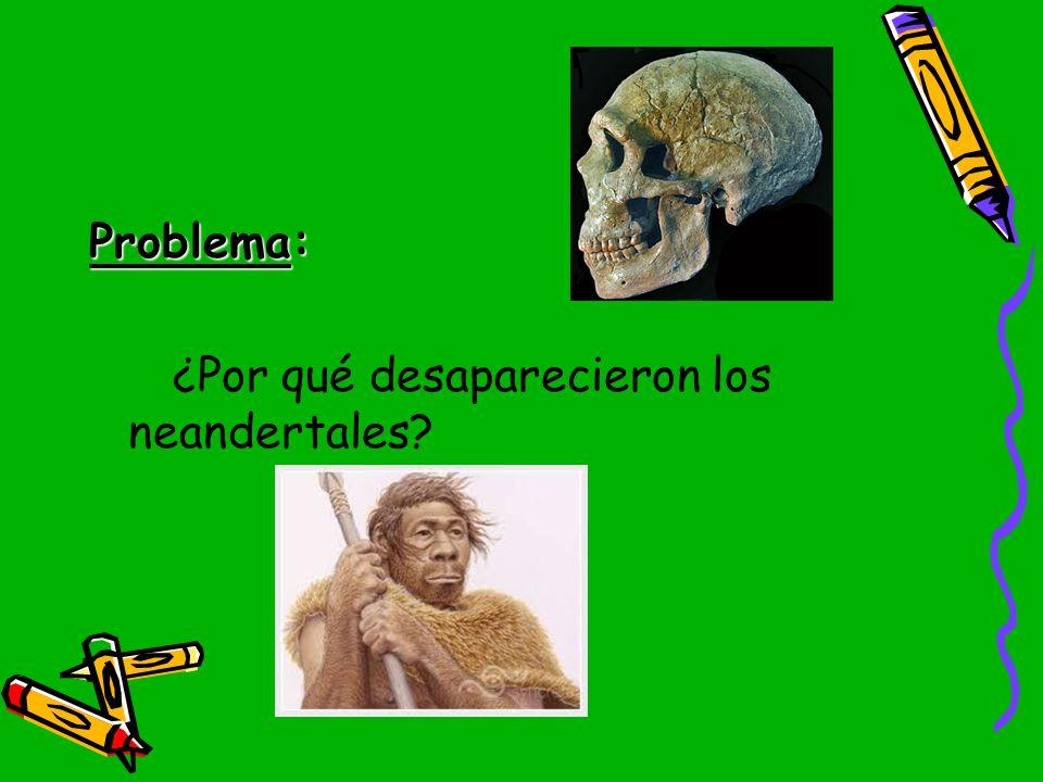 Problema: ¿Por qué desaparecieron los neandertales