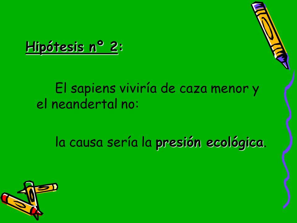Hipótesis nº 2: El sapiens viviría de caza menor y el neandertal no: la causa sería la presión ecológica.