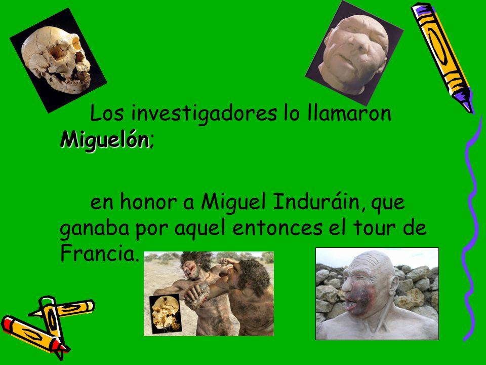 Los investigadores lo llamaron Miguelón;