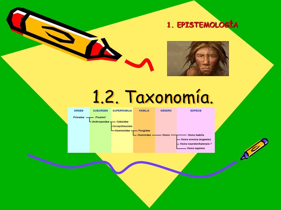 1. EPISTEMOLOGÍA 1.2. Taxonomía.