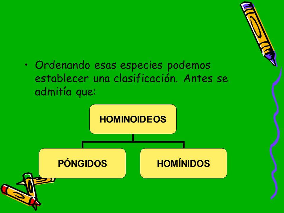 Ordenando esas especies podemos establecer una clasificación