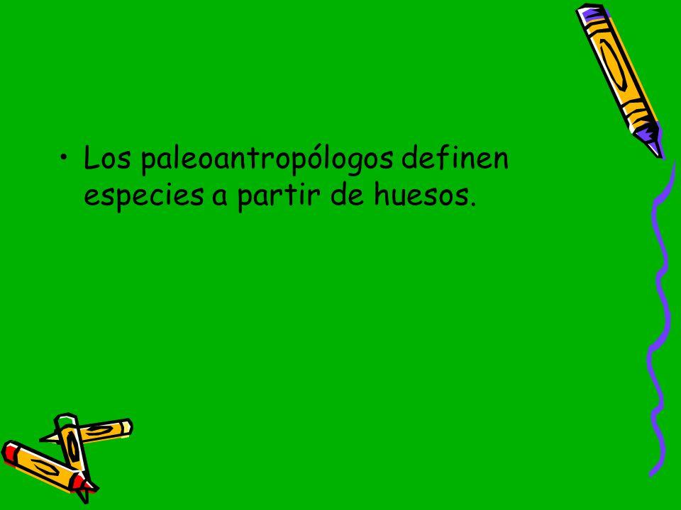 Los paleoantropólogos definen especies a partir de huesos.