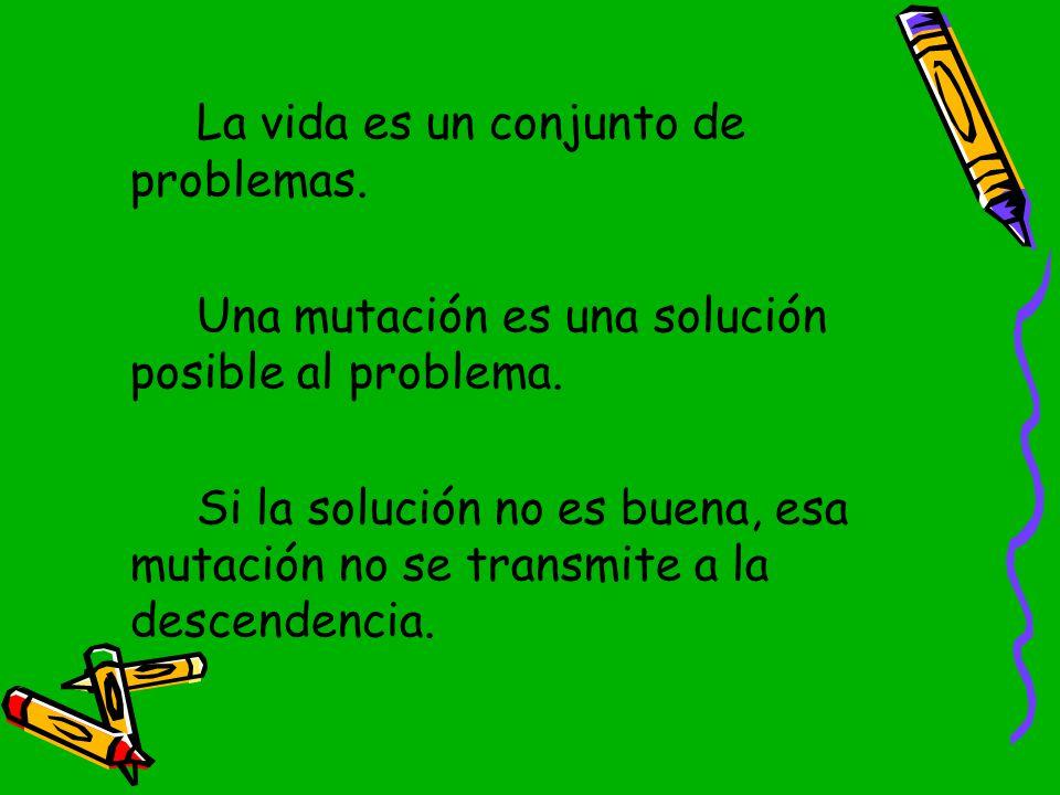 La vida es un conjunto de problemas.