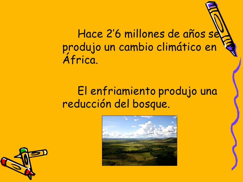 Hace 2'6 millones de años se produjo un cambio climático en África.