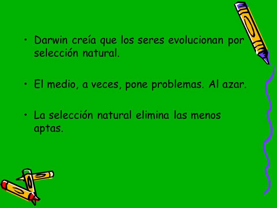 Darwin creía que los seres evolucionan por selección natural.