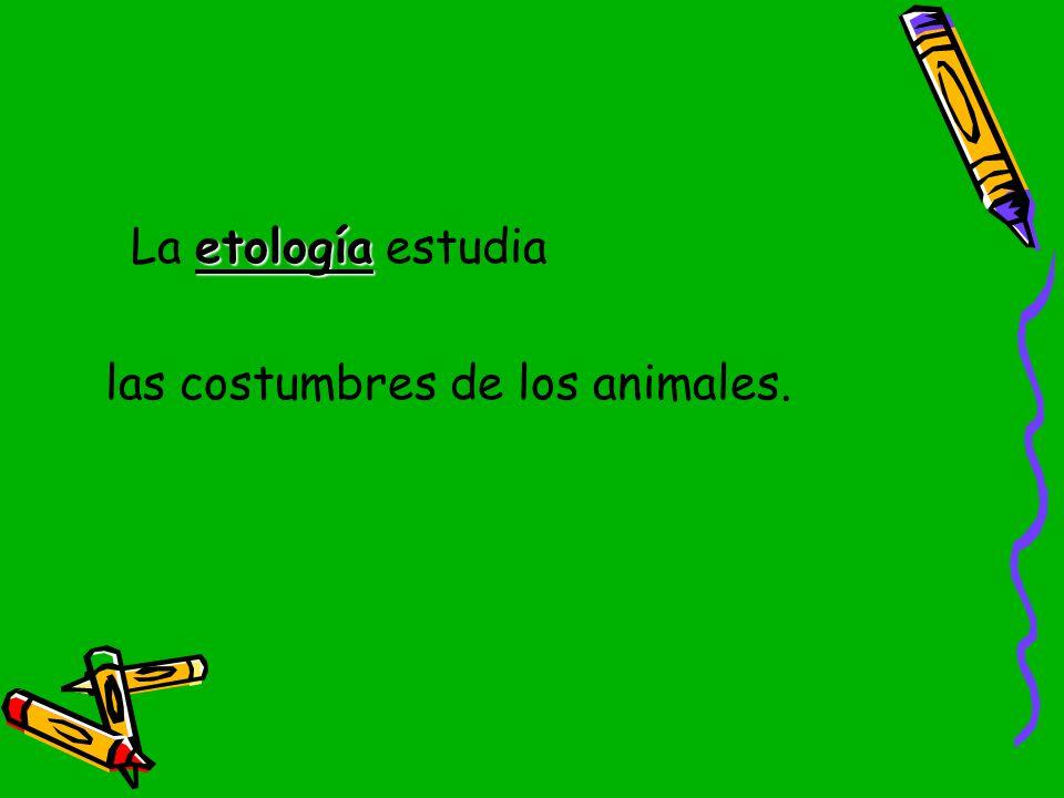 La etología estudia las costumbres de los animales.