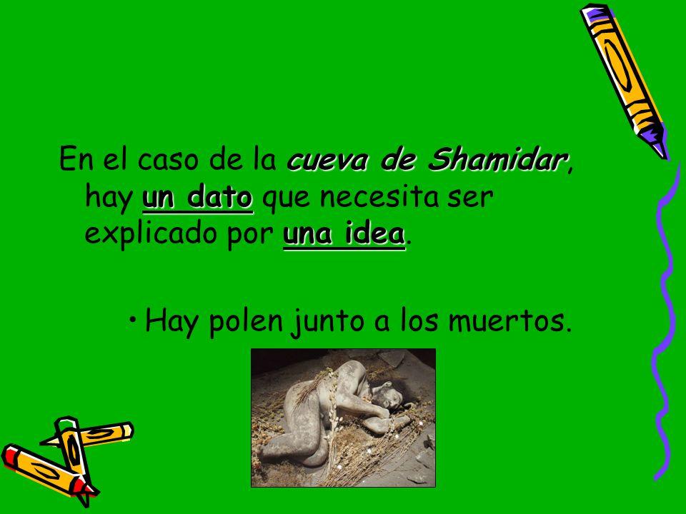 En el caso de la cueva de Shamidar, hay un dato que necesita ser explicado por una idea.