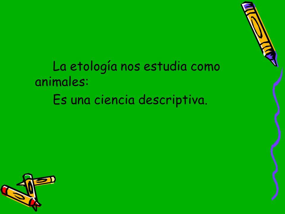 La etología nos estudia como animales: