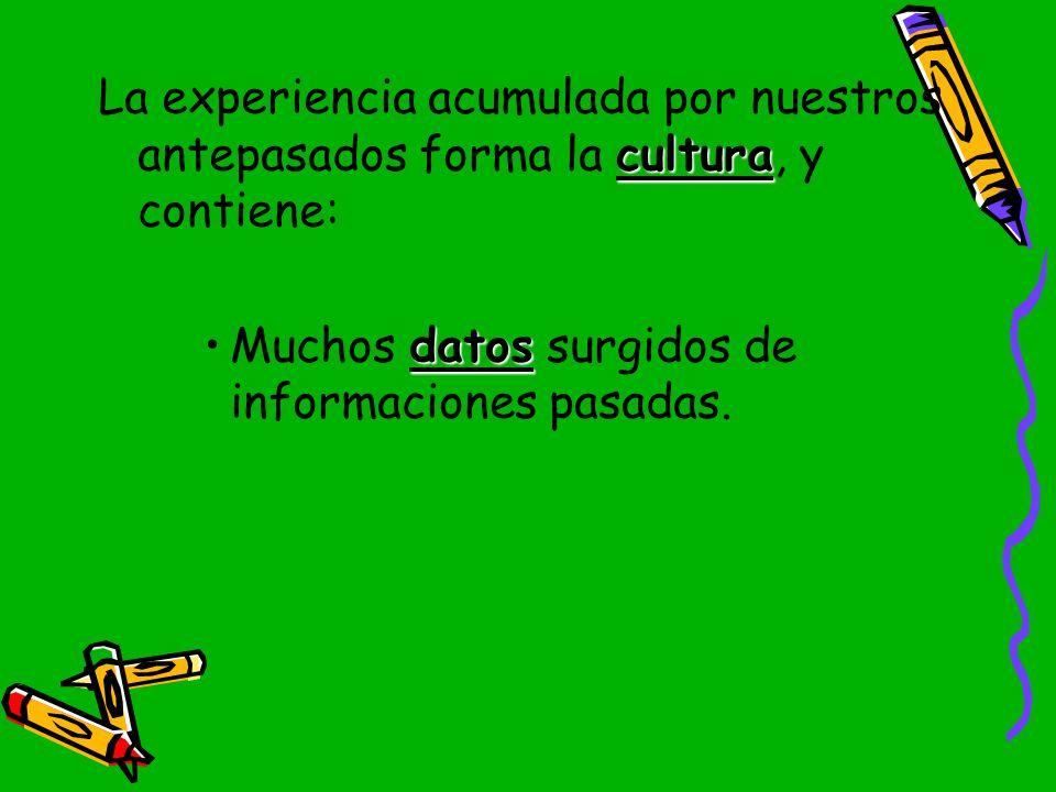 La experiencia acumulada por nuestros antepasados forma la cultura, y contiene: