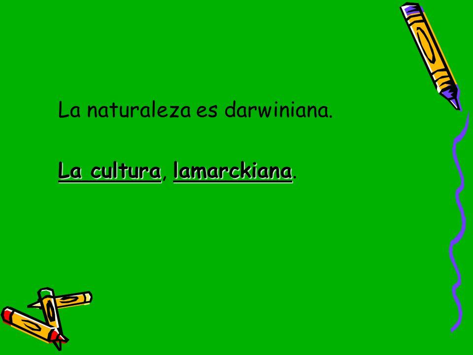 La naturaleza es darwiniana.