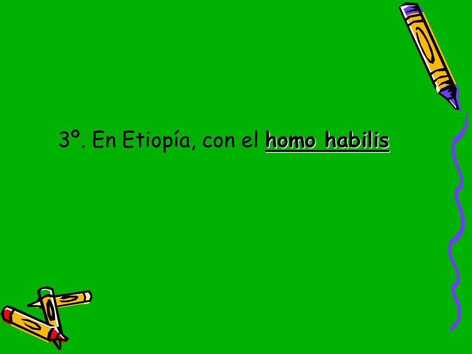 3º. En Etiopía, con el homo habilis