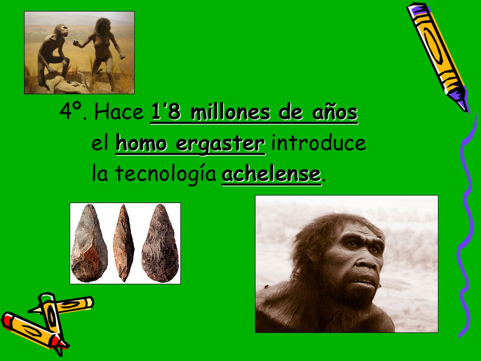 4º. Hace 1'8 millones de años