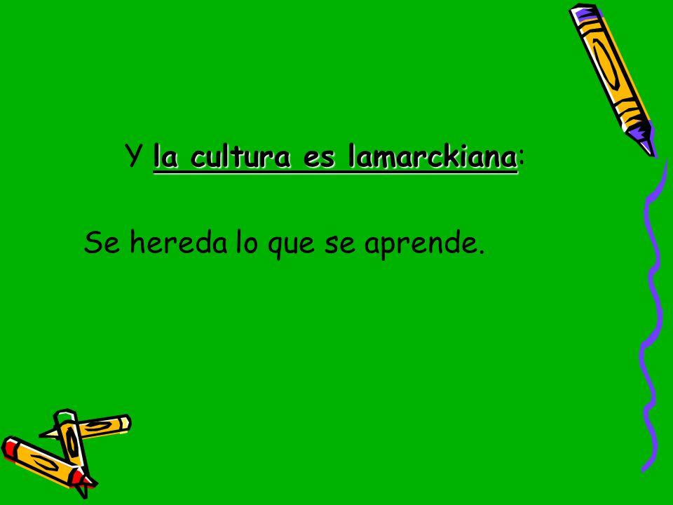 Y la cultura es lamarckiana: