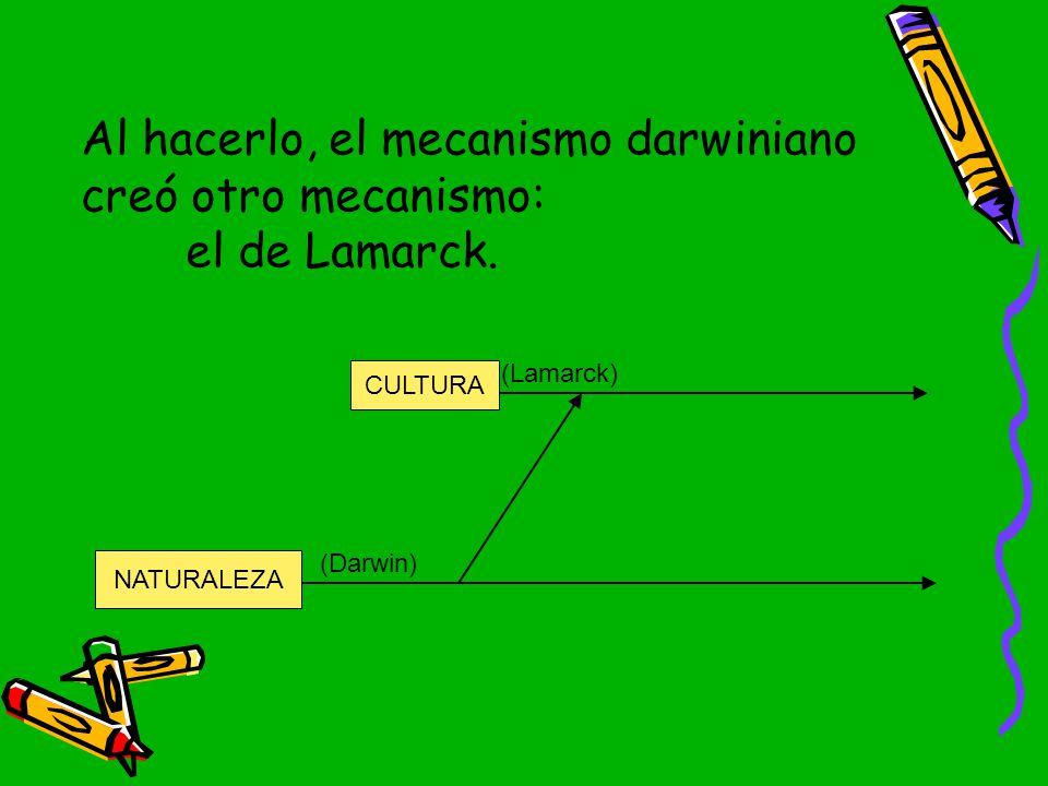 Al hacerlo, el mecanismo darwiniano creó otro mecanismo: el de Lamarck.