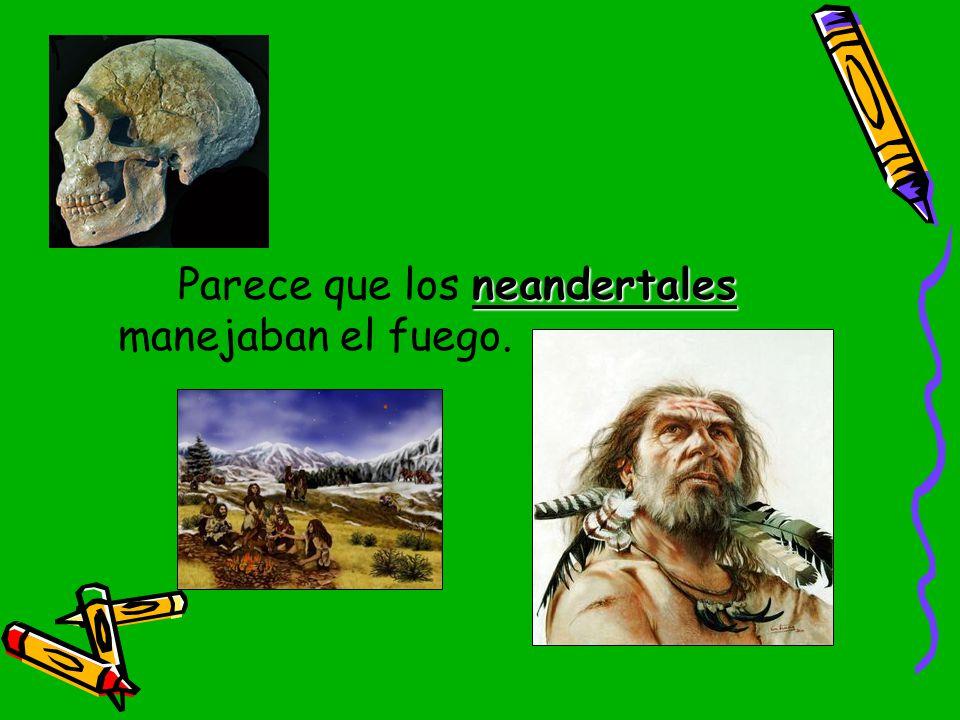 Parece que los neandertales manejaban el fuego.