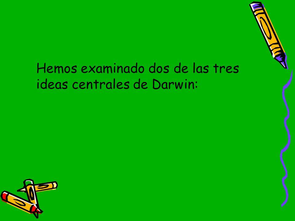 Hemos examinado dos de las tres ideas centrales de Darwin: