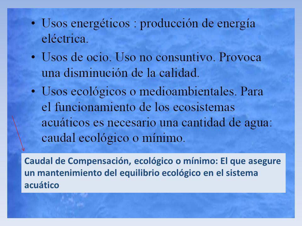 Caudal de Compensación, ecológico o mínimo: El que asegure un mantenimiento del equilibrio ecológico en el sistema acuático