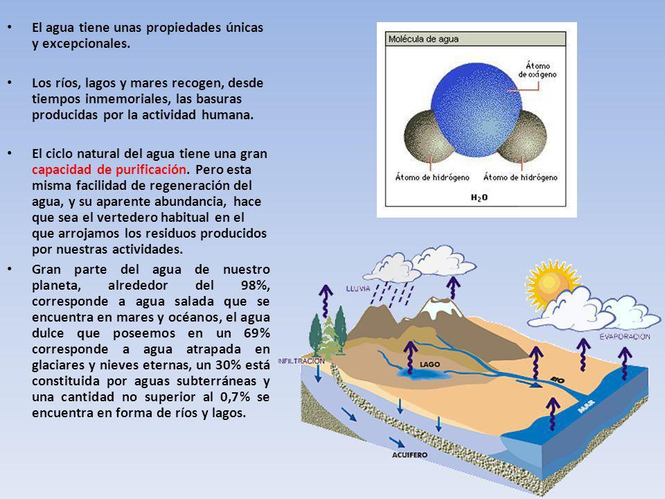 El agua tiene unas propiedades únicas y excepcionales.