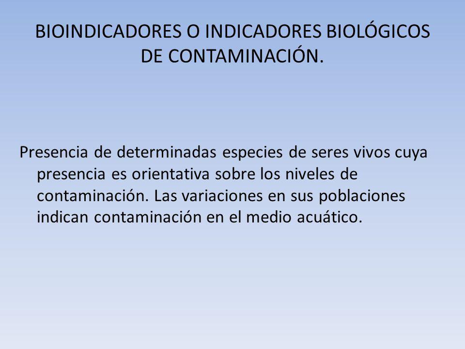 BIOINDICADORES O INDICADORES BIOLÓGICOS DE CONTAMINACIÓN.