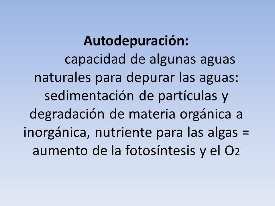 Autodepuración: capacidad de algunas aguas naturales para depurar las aguas: sedimentación de partículas y degradación de materia orgánica a inorgánica, nutriente para las algas = aumento de la fotosíntesis y el O2
