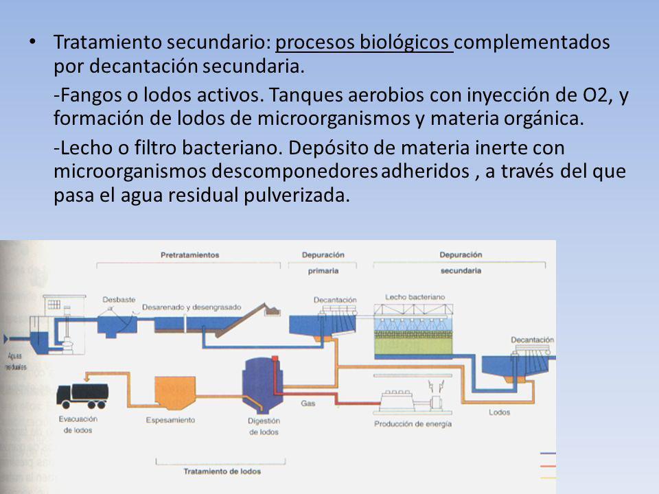 Tratamiento secundario: procesos biológicos complementados por decantación secundaria.